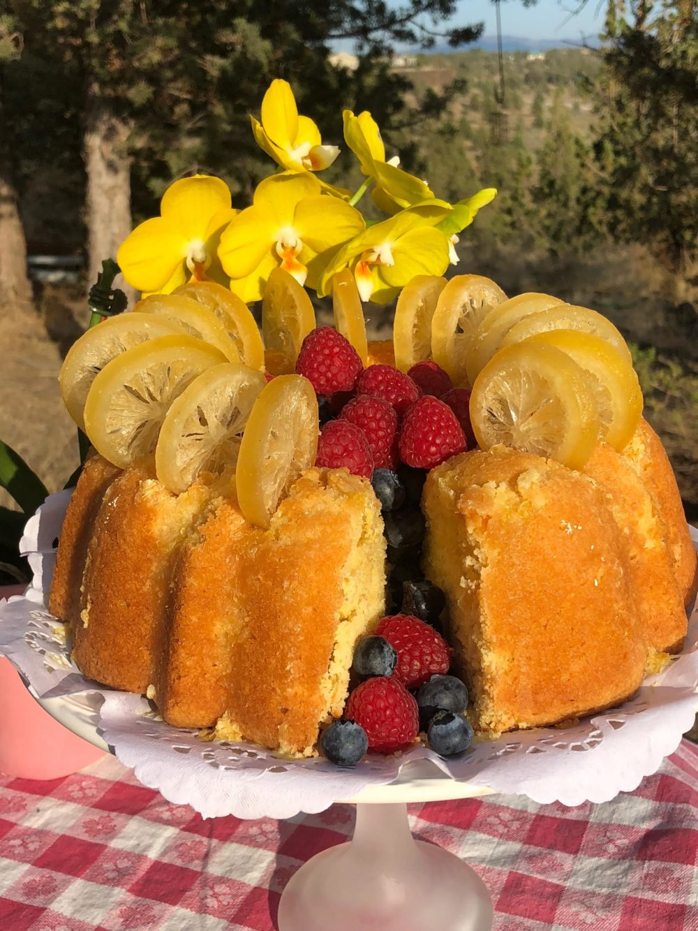 Pound Cake Raspberries And Candied Citrus