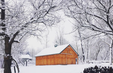 Kettle Ridge Farm Adopt-a-Maple Indiegogo January 2019