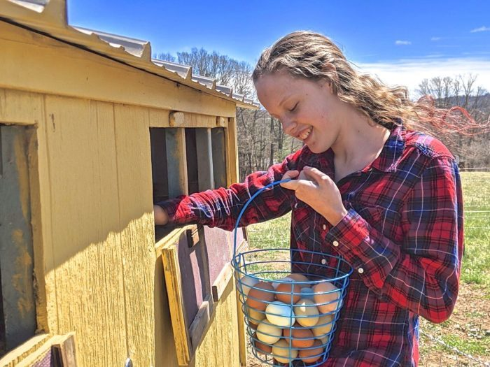 Coop To Cookies: Teenage Homesteader